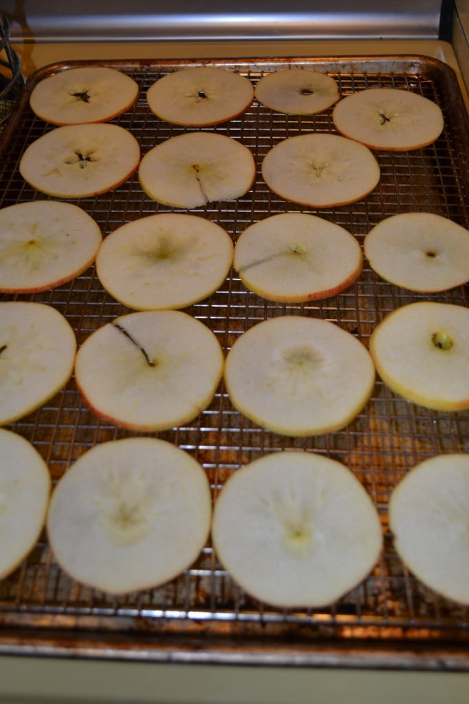 Baked Apple Chips   Delish D'Lites