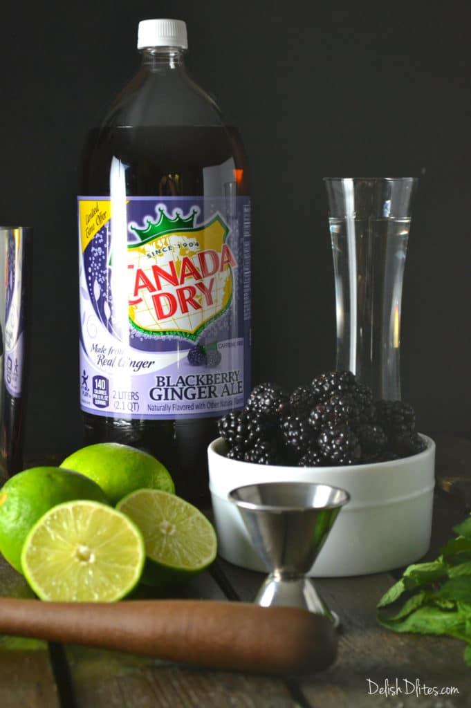 Blackberry Mojitos | Delish D'Lites